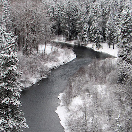 FROM ABOVE by Cynthia Dodd - Novices Only Landscapes ( water, winter, ice, creek, snow, trees, river )