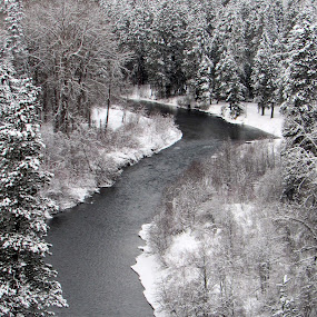 FROM ABOVE by Cynthia Dodd - Novices Only Landscapes ( water, winter, nature, ice, outdoors, snow, creek, trees, river,  )