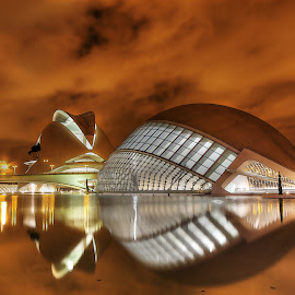 Valencia Science & Arts Park by Jon Jones - Buildings & Architecture Other Exteriors ( water, reflection, building, riverbed, park, night, cityscape, valencia, spain, science )
