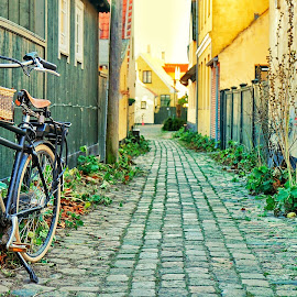 Bicycle by Mirza Ekinovic - City,  Street & Park  Street Scenes ( bicycle street old danmark )