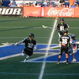 Got the ball by Kathryn Nagelberg - Sports & Fitness Lacrosse ( boston cannons, ny lizards, lacrosse )