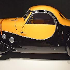 1936 Peugeot 402 Coupe by Ada Irizarry-Montalvo - Transportation Automobiles