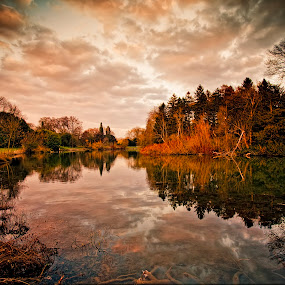 Reflections of Autumn by Martin Crush - Landscapes Waterscapes ( water, canon, swans, lucis pro 6, crush photojournalism, hdr, crush, photojournalism, textures, ducks, lakes, reflections, lake, landscape, photography, wildfowl, crush photography, ponds, nature, scenery, nikon, geese, pond )