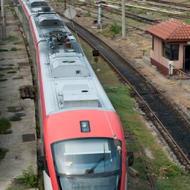 Train top view by Deyan Georgiev - Transportation Trains ( orange, technology, rails, engine, speed, station, electric, railroad, wagon, track, economy, journey, way, travel, transportation, electrified, subway, railway, voyage, transport, locomotive, movement, train, perspective, move )