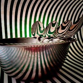 Spoons and bowls in stripes reflection by Janette Ho - Artistic Objects Still Life