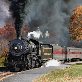 Western Maryland Scenic Railroad by Vicki Pardoe - Transportation Trains ( steam engine, steam train, train )
