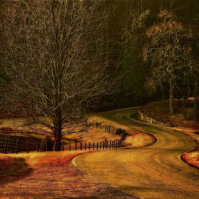 long & winding road by Mark Turnau - Landscapes Prairies, Meadows & Fields