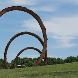 Gyre by Thomas Shaw - City,  Street & Park  City Parks ( clouds, ncma, park, grass, art, museum, raleigh, north carolina, city, 3, sky, thomas sayre, earthcast, trees, rings, gyre )