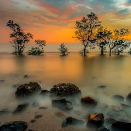 by Abdul Rahman - Landscapes Sunsets & Sunrises (  )