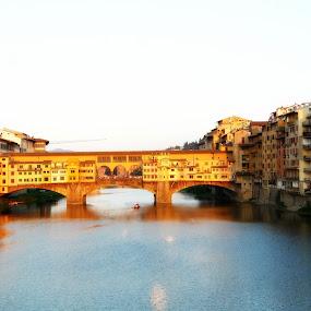 Ponte Vecchio by Dhannya Jacob - Buildings & Architecture Bridges & Suspended Structures ( pwcbridges )