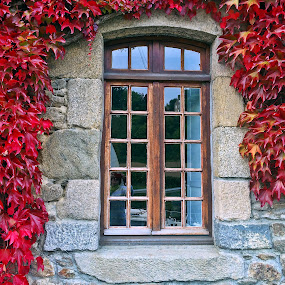 Window from Dinan by Dobrin Anca - Buildings & Architecture Architectural Detail ( window, autumn, dinan, sunny, leaves,  )
