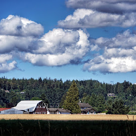 Clouds, barn, field  by Todd Reynolds - Buildings & Architecture Other Exteriors