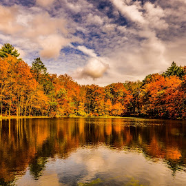 Along The Delaware Water Gap by Mike Parker - Landscapes Waterscapes