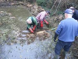 Photo 1 / 1 - Puttenham Pond Clearance with Masonry Saw, Jan 2017