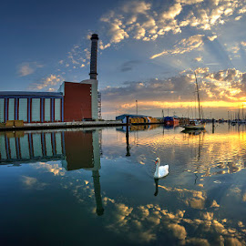 Swan Lake by Mark Bond - Landscapes Waterscapes ( bird, reflection, powerstation, sunset, swan, beauty )