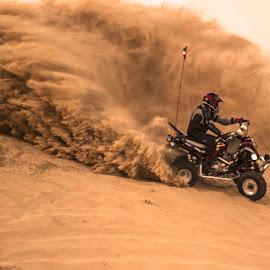 by Biswadip Das - Sports & Fitness Motorsports ( desert, motorbike, motorcycle, sandy, motorsport )