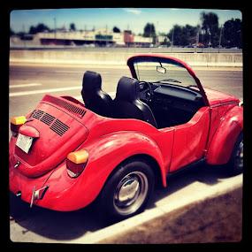 Custom Bug - I would love this! by Debi Tipton - Instagram & Mobile Instagram