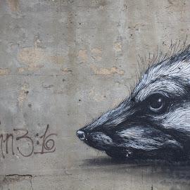 street art is eternal by Marelin Enriquez - City,  Street & Park  Neighborhoods