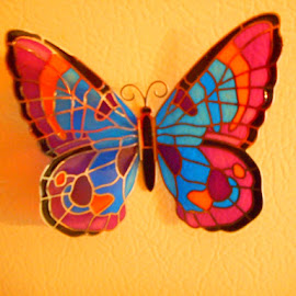 Beautiful Colorful Butterfly by David Jarrard - Animals Other ( butterfly, animals, flying colors, artist objects, insects )