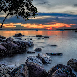 Sunset by the coast by Gordon Koh - Landscapes Sunsets & Sunrises ( natural light, sunset, seascape, rocks )