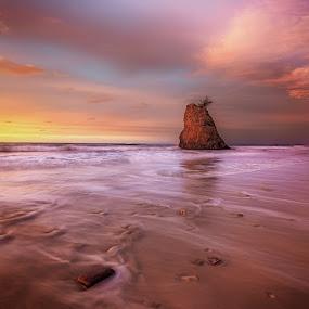 Tugu Teguh by Esmar Abdul Hamid - Landscapes Sunsets & Sunrises
