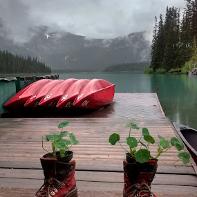 by Ron Jnr - Landscapes Waterscapes ( water, clouds, red boots, canada, wood, boats )