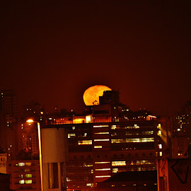 Today the Moon was born in Glicério in Sao Paulo - Brazil by Marcello Toldi - City,  Street & Park  Vistas