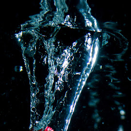 Dice Shoot by Adriano Freire - Abstract Water Drops & Splashes ( water, dice, splash, shoot, photography )