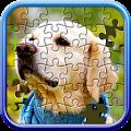 Jigsaw Puzzle Master APK for Bluestacks