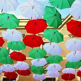 A po roce zase deštníkové nebe by Petr Olša - City,  Street & Park  Street Scenes
