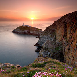 Last Light by Neil O'Connell - Landscapes Sunsets & Sunrises ( wales, sunset, lighthouse, flowers, south stack, coast )
