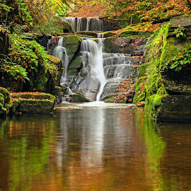 on the river by Naiden Bochev - Landscapes Waterscapes ( water, autumn, waterscape, waterfall, river )