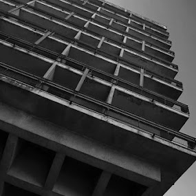 Hotel Onogost by Aleksandar Šeter - Buildings & Architecture Office Buildings & Hotels ( black and white, pwcbuilding )