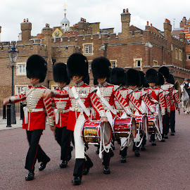 by Dee Haun - People Musicians & Entertainers ( uniforms, marching band, marching, white, 130814$0252r4ce1, drums, people, musicians, england, band, red, london, guard, queen's guard )