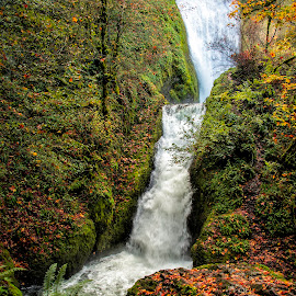Bridal Veil Falls in the Columbis\a River Gorge by Chris Bartell - Landscapes Waterscapes ( water, oregon, waterfall, landscape, bridal veil )