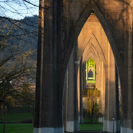 Cathedral Park by Lori Pagel - Buildings & Architecture Bridges & Suspended Structures ( arch, church-like, green, architecture, morning, under bridge, shadows, architect, dawn, shadow, arches, outdoors, architectural, cathedral, day, bridge, light )