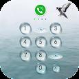 AppLock Theme - Seagulls
