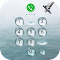App AppLock Theme - Seagulls APK for Kindle