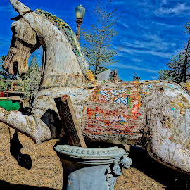 Merry-Go-Round Has Stopped by Barbara Brock - Artistic Objects Other Objects ( old wooden horse, wooden horse, carnival wood horse )