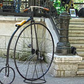by Alenka Predic - Transportation Bicycles