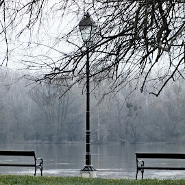 by Vladimir Stojićević - City,  Street & Park  City Parks