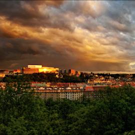 by Ivan Rusek - City,  Street & Park  Vistas
