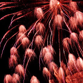 Burst by Savannah Eubanks - Abstract Fire & Fireworks ( red, sky, firework, light, night )