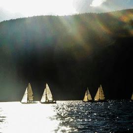 Sailing in the sunset by Natasha Lena - Sports & Fitness Watersports ( peaceful, lighting, sailing, sunset, british columbia )