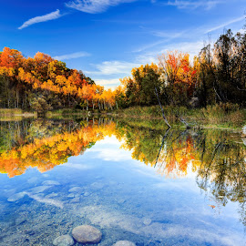 Kettle Reflection by Shawn Conrad - Landscapes Forests ( reflection, fall colors, colors, fall, kettle moraine )