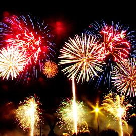 Saginaw Fireworks Festival by Howard Sharper - Public Holidays July 4th ( firework, fourth of july, holidays, fireworks, july )
