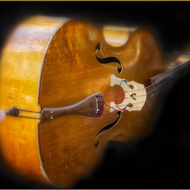 0764-AOMI-0717-08-16 by Fred Herring - Artistic Objects Musical Instruments