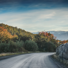 Patagonia by Edi Libedinsky - Landscapes Mountains & Hills ( sky, beautiful, mountain, road, curve, trees, landscape )