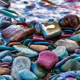 Rocks at Glacier National Park by Carol Ward - Nature Up Close Rock & Stone ( montana, colorful rocks, beach, st. mary's lake, rocks, glacier national park )
