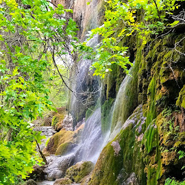 Gorman Falls  by Roxana McRoberts - Instagram & Mobile iPhone ( waterfall )